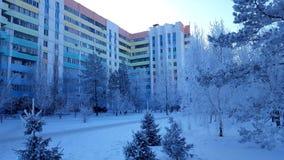 Siberian vinter i staden royaltyfria foton