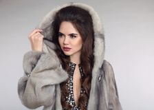 Siberian woman in mink fur coat over studio gray background. Fas Royalty Free Stock Photos