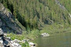 siberiano del fiume della montagna di mana Immagini Stock