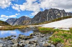 Siberisch berglandschap Stenen met mossen en korstmossen over water worden behandeld dat Stock Foto