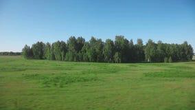 Siberisch landschap - mening van trein stock videobeelden