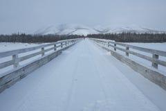 Siberische brug Royalty-vrije Stock Afbeeldingen