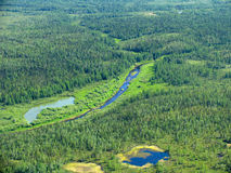 Siberische taiga - luchtmening Royalty-vrije Stock Afbeelding