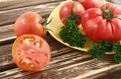 Siberische tomaten Stock Fotografie