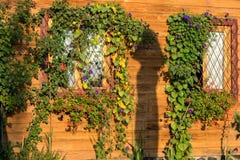 SIBIEL, TRANSYLVANIA/ROMANIA - 17 ΣΕΠΤΕΜΒΡΊΟΥ: Φως του ήλιου ο πρωινού στοκ φωτογραφία