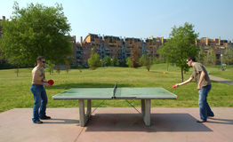 Sibilo Pong Fotografia de Stock Royalty Free