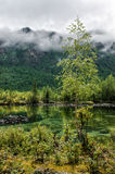 sibirien Schöner grüner Nebelsee im Wald Burjatien stockbilder