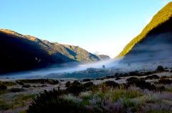 Sibirien-Tal; Berg-strebender Nationalpark, Südinsel stockfotografie