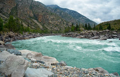 Sibirischer Fluss Katun in Altai-Bergen Lizenzfreie Stockfotos