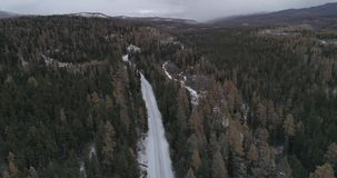 Sibirisches Zeder taiga an den Sonnenuntergangwintern, Altai, Russland 2 stock footage