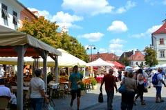 Sibiu, capital europea de la cultura por el año 2007 Foto de archivo libre de regalías