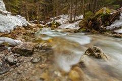 Sibli-Wasserfall小瀑布。Rottach-Egern,巴伐利亚,德国 免版税图库摄影