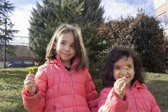 Sibling die gele bloem overhandigen royalty-vrije stock afbeelding
