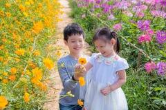 Sibling in flower garden Royalty Free Stock Photo