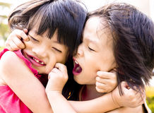 Sibling het spelen Royalty-vrije Stock Fotografie