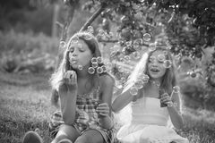 Siblings blowing soap bubbles Stock Photos