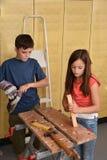 Siblings, boy and girl as home handymen