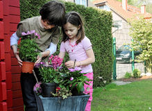 Siblings die bloemen planten Stock Afbeelding