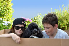 Siblings and dog. Happy siblings playing with their dog in the garden, sitting together in a cardboard box