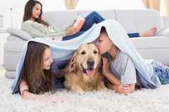 Siblings with dog under blanket Stock Images