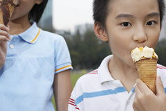 Siblings Eating Ice Creams In Park Royalty Free Stock Photo