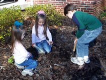 Siblings in the Garden. Planting bulbs for a spring garden Royalty Free Stock Photography