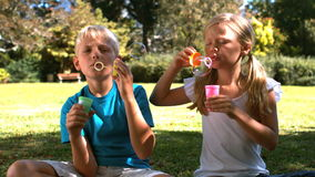 Siblings having fun with bubbles stock video footage