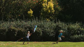 Siblings having fun in a park with a kite stock video