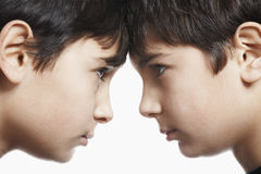 Siblings With Head To Head Against White Background Royalty Free Stock Images