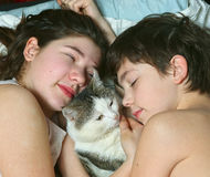 Siblings kids brother and sister sleep with cat Stock Photos