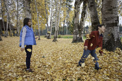 Siblings in leaf fight. Royalty Free Stock Photo