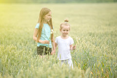 Siblings making their way through field of chamomiles Royalty Free Stock Photo