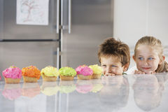 Siblings Peeking Over Counter At Row Of Cupcakes Stock Image
