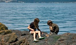 Siblings Playing on Rocky Shore Stock Photo