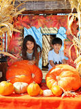 Siblings at pumpkin patch royalty free stock images