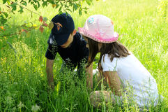 Siblings searching. Something in the meadow stock photo