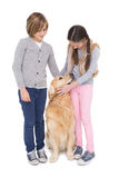 Siblings standing and petting their golden retriever Royalty Free Stock Photos