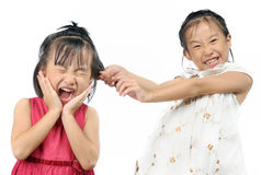 Siblings teasing, asian little girl pulling her sister's hair. In the white background Stock Image