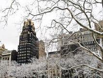 Sicómoro Bryant Park del invierno Imagen de archivo