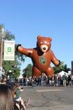 Sic 'Em Bears Royalty Free Stock Photos