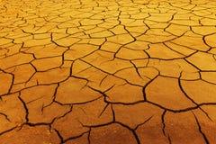 siccità di estate fotografie stock libere da diritti