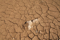 Siccità e desertificazione Fotografia Stock Libera da Diritti