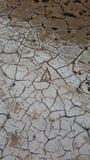 siccità incrinata Immagini Stock Libere da Diritti