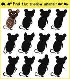 Sich entwickelnde Spiel der Kinder, zum einer tierischen lustigen Babymaus des passenden Schattens zu finden Vektor vektor abbildung