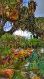 Sich hin- und herbewegende Berge in der Welt des Avataras an Disney-` s Tierreich lizenzfreie stockfotos