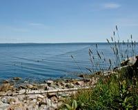 Sich hin- und herbewegende Fischnetze in der Bucht Stockfotos