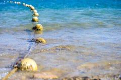 Sich hin- und herbewegende Seebälle Lizenzfreies Stockbild
