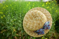 Sich hin- und herbewegender Hut auf dem Rapsblumengebiet Stockfotos