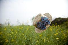 Sich hin- und herbewegender Hut auf dem Rapsblumengebiet Stockfoto
