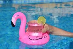 Sich hin- und herbewegender rosa Flamingo trinkt Halter im Swimmingpool stockfoto